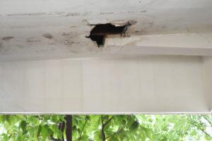 Interior Roof Repair Front Porch